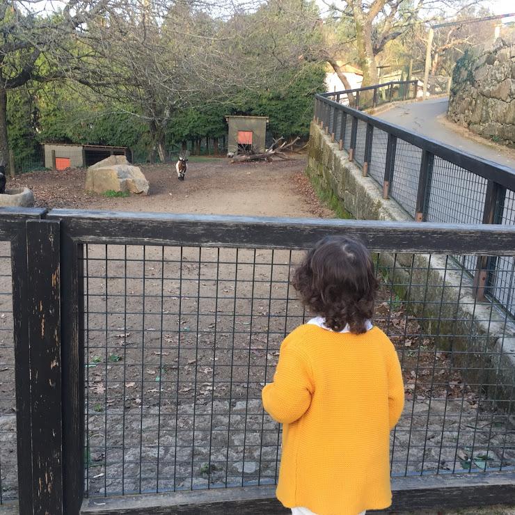a-mae-e-minha-parque-biologico-de-gaia